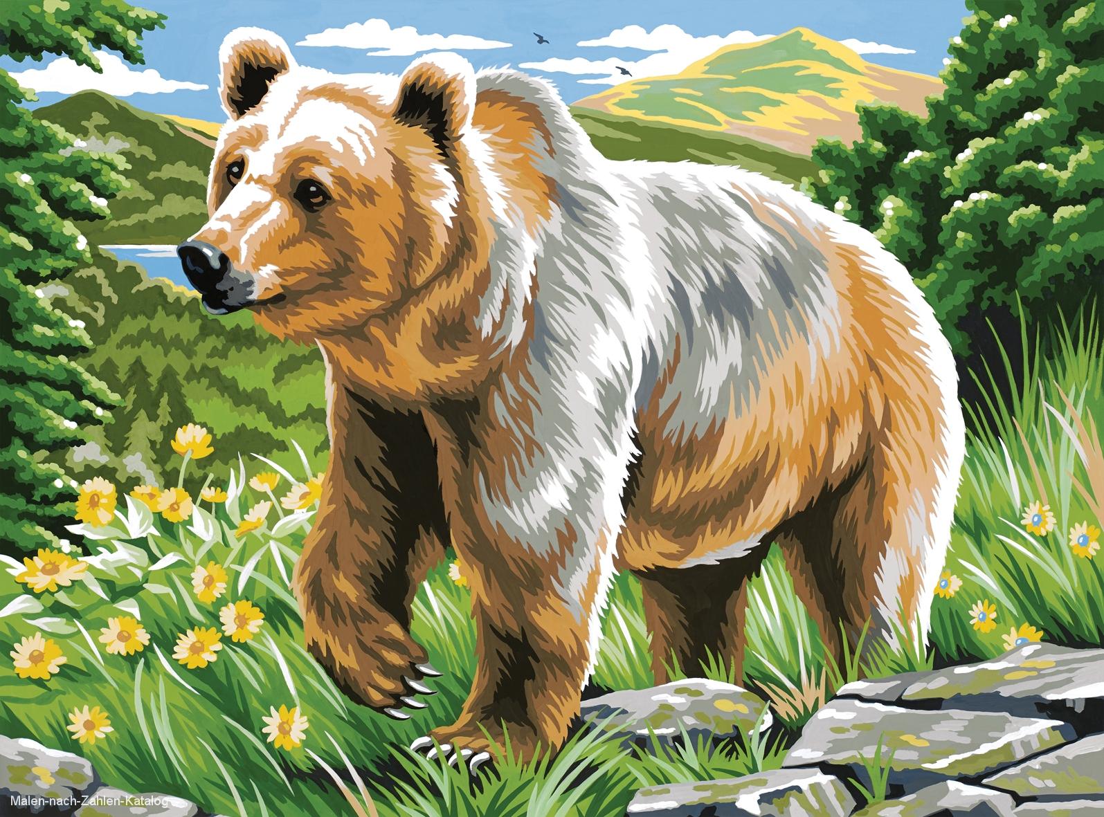 Mammut Malen nach Zahlen Groß 40 x 30 cm - Braunbär