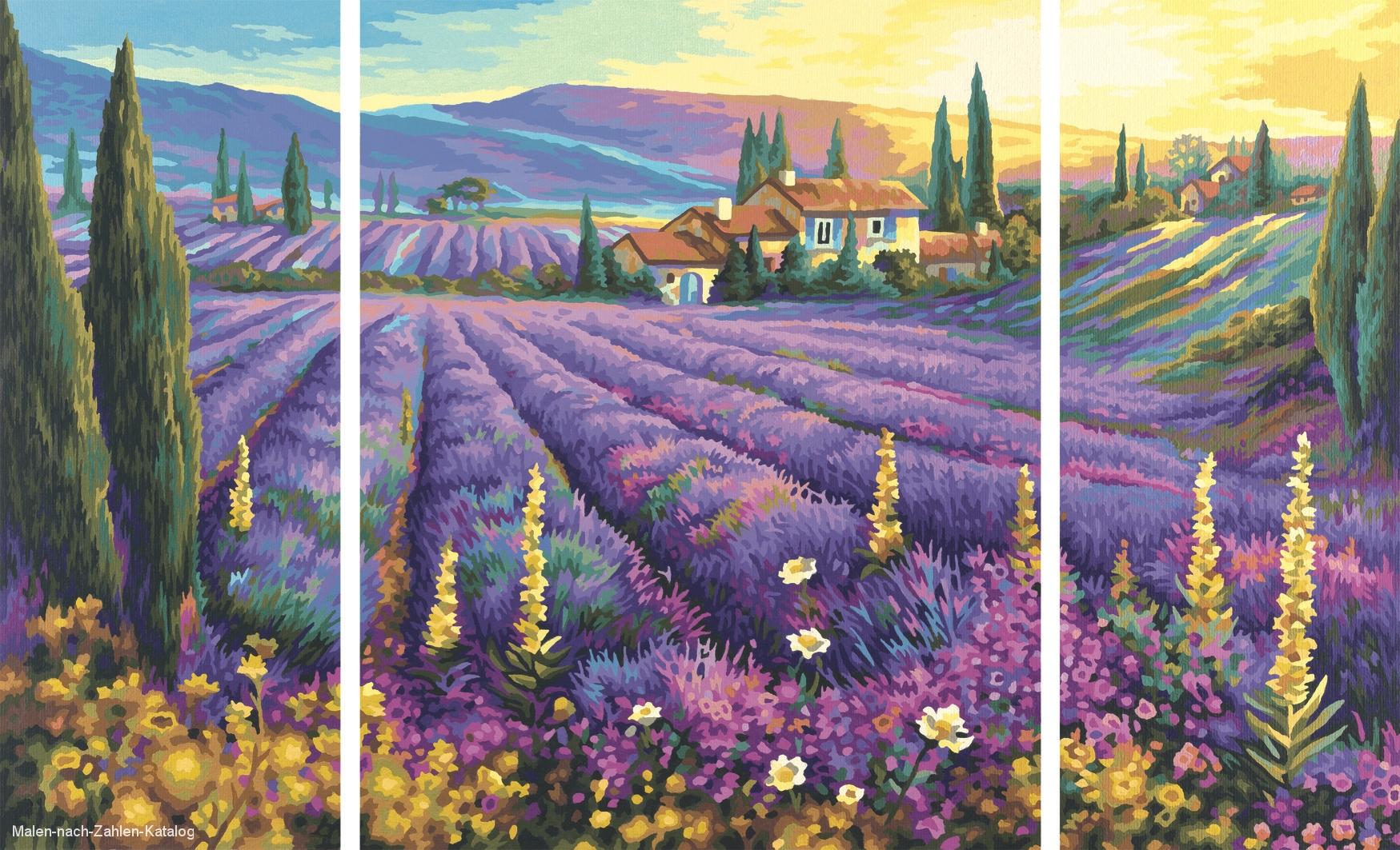 Schipper Malen nach Zahlen - Lavendelfelder