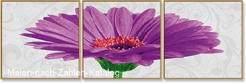 Schipper Malen nach Zahlen Meisterklasse Triptychon 120 x 40 cm - Gerbera jamesonii violett