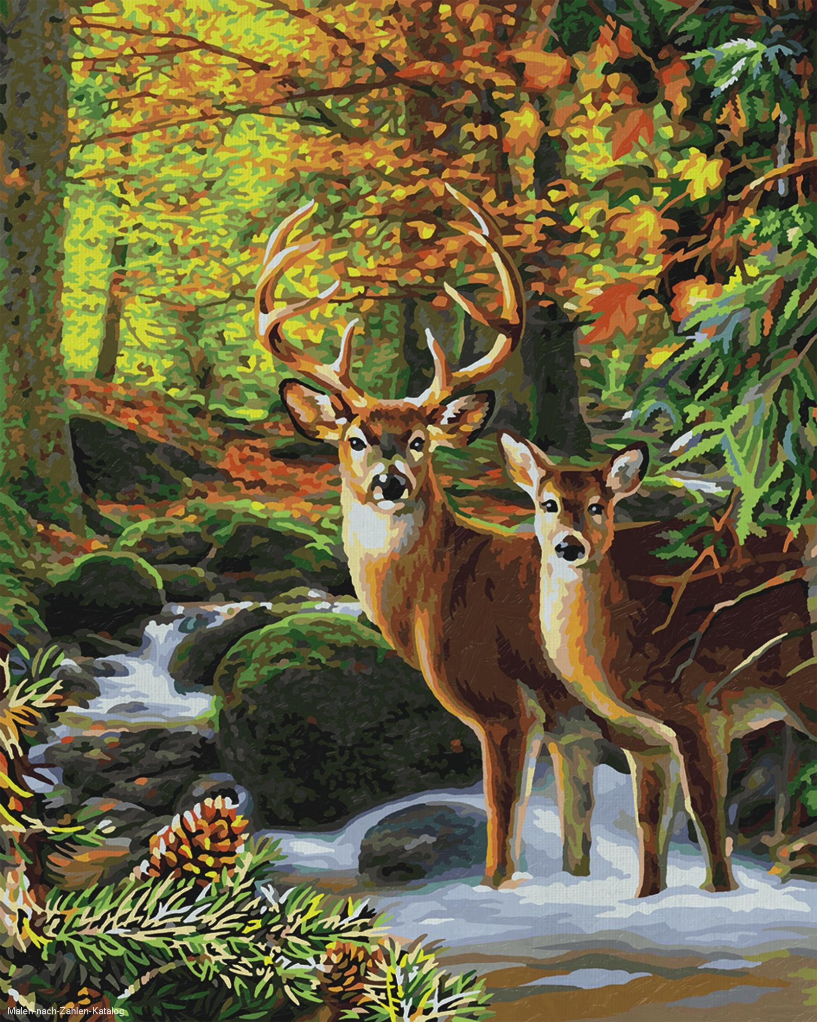 Schipper Malen nach Zahlen Premium 40 x 50 cm - Mein schöner Garten