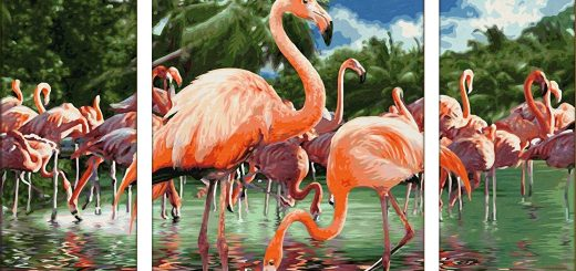 flamingos-oR